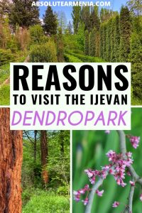 Ijevan Dendropark travel guide in Ijevan, Armenia (Tavush region) | #armenia #tavush #ijevan #arboretum #dendropark | Travel to Ijevan | Armenia Travel | Tavush Travel | Ijevan Arboretum | Visit Armenia | Places to visit in Armenia | North Armenia | Former USSR | Armenia photography | Ijevan Things to do