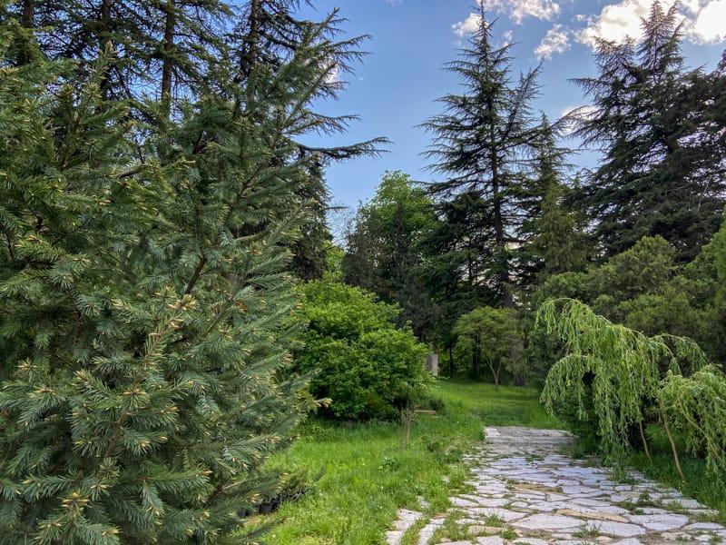 Ijevan Dendropark: A Natural Getaway in Beautiful Ijevan