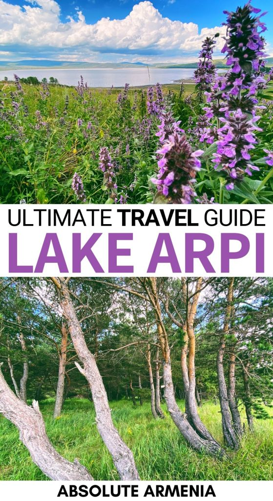 Are you planning to visit Lake Arpi National Park? This guide details how to visit, why you should travel there, and the many things to do at Lake Arpi. | Gyumri day trips | Things to do in Armenia | Armenia national parks | Lake Arpi hiking | Lake Arpi trails | What to do in Gyumri | Gyumri to Lake Arpi | Lake Arpi nature | Armenia wildlife | Armenia wildflowers | Places to visit in Armenia | Places to visit in Caucasus