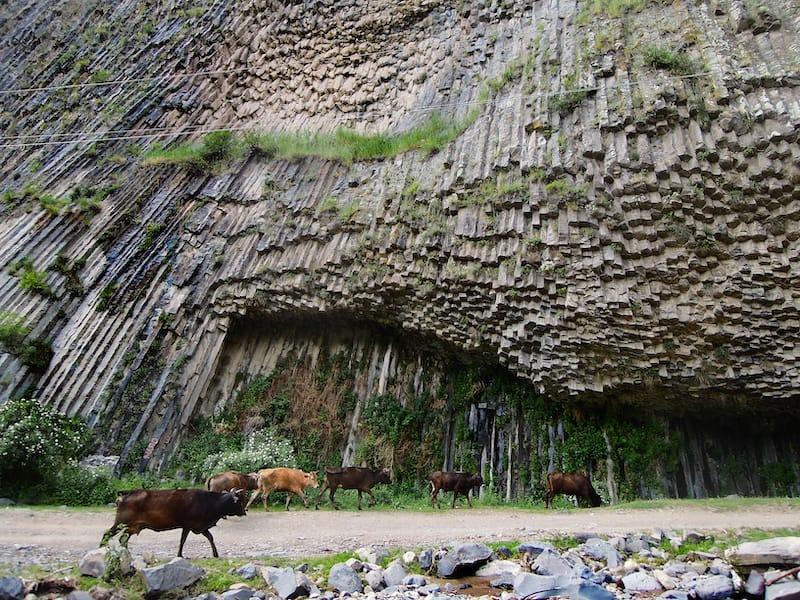 Symphony of Stones in Garni Gorge