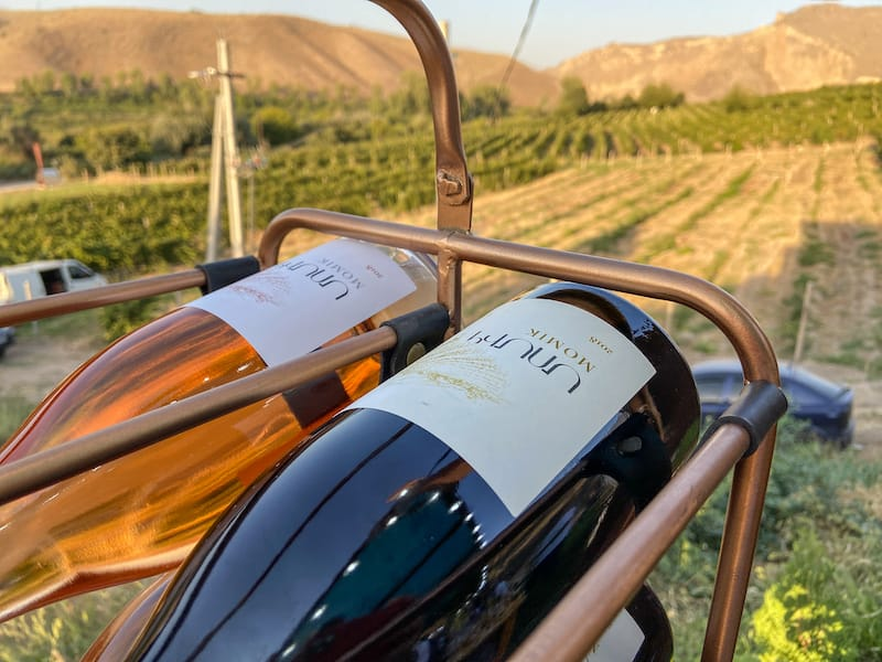Momik Wines